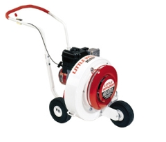 Where to rent BLOWER, WALKBEHIND LEAF DEBRIS in Mount Pleasant MI