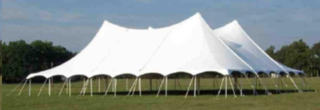 Where to find 60  WIDE SPARKLING WHITE TWIN POLE TENTS in Mount Pleasant