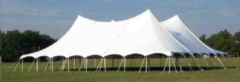 Where to rent 60  WIDE SPARKLING WHITE TWIN POLE TENTS in Mount Pleasant MI