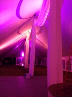 Where to rent TENT LED WASH LIGHTS 40 -60  WIDE in Mount Pleasant MI