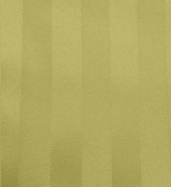 Where to rent ACID GREEN POLY STRIPE LINEN in Mount Pleasant MI
